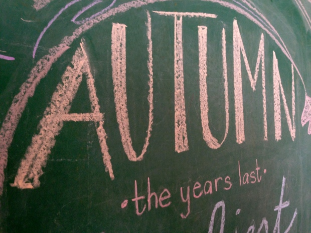 fall chalkboard artwork 6