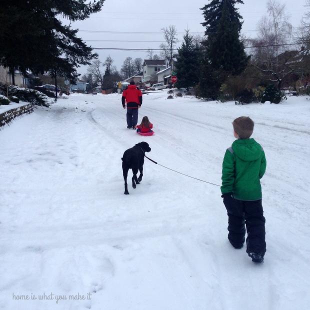 snow days 12