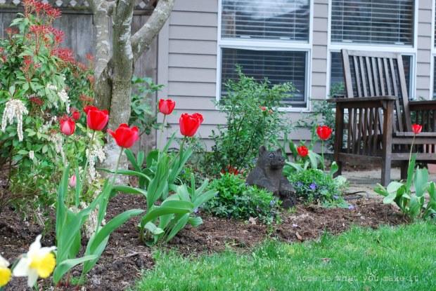 in the garden 19